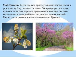 Май-Травень. Весна одевает природу в новые чистые одежки. радостно щебечут пт