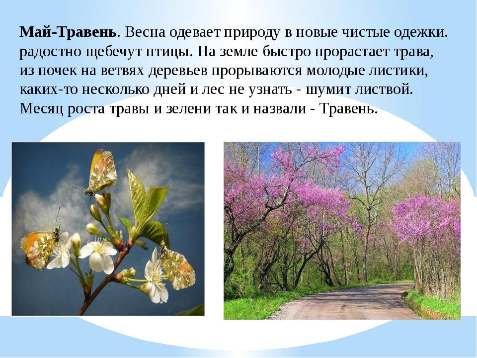 Май-Травень. Весна одевает природу в новые чистые одежки. радостно щебечут пт...