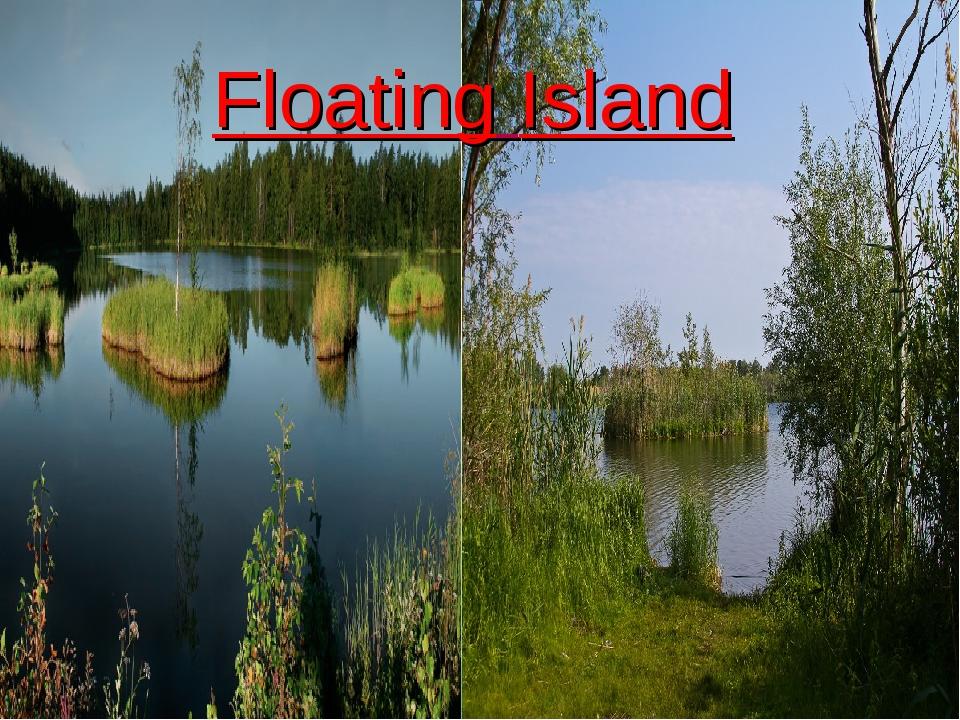 - Floating Island