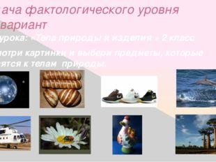 Задача фактологического уровня 2-й вариант Тема урока: «Тела природы и издели