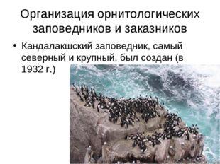 Организация орнитологических заповедников и заказников Кандалакшский заповедн