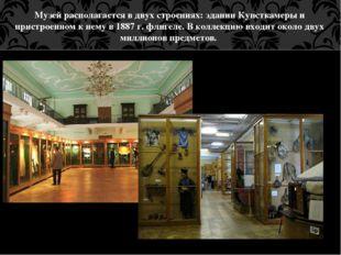 Музей располагается в двух строениях: здании Кунсткамеры и пристроенном к нем