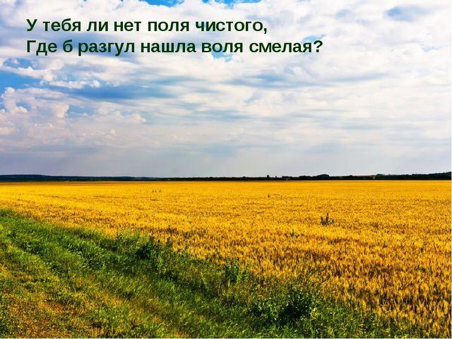 У тебя ли нет поля чистого, Где б разгул нашла воля смелая?