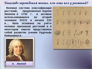 Половая система классификации растений, предложеннаяКарлом Линнеемв 1735 г.