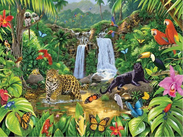 1 конкурс «Животные джунглей»