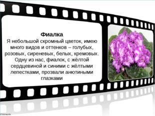 Фиалка Я небольшой скромный цветок, имею много видов и оттенков – голубых, ро