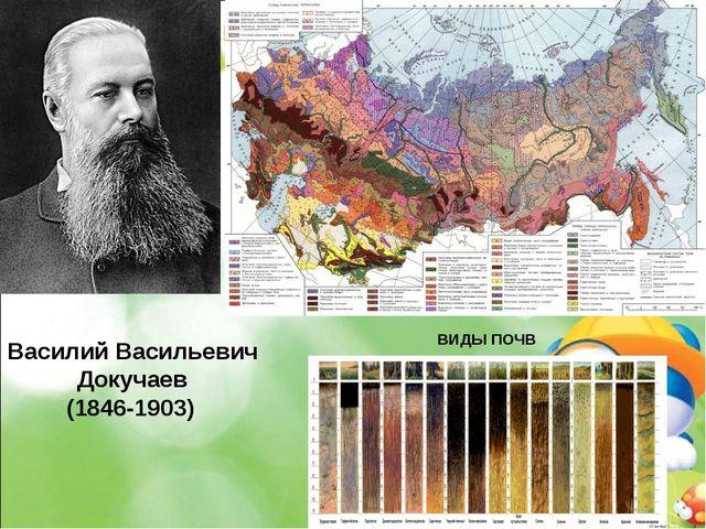 Василий Васильевич Докучаев (1846-1903) ВИДЫ ПОЧВ