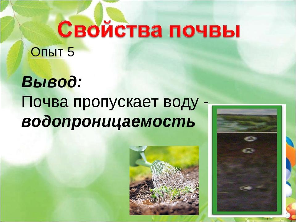 Опыт 5 Вывод: Почва пропускает воду - водопроницаемость