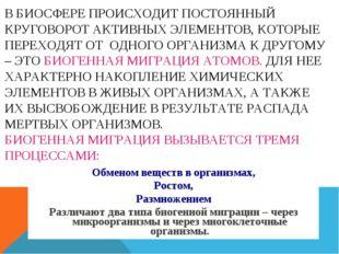 В БИОСФЕРЕ ПРОИСХОДИТ ПОСТОЯННЫЙ КРУГОВОРОТ АКТИВНЫХ ЭЛЕМЕНТОВ, КОТОРЫЕ ПЕРЕХ