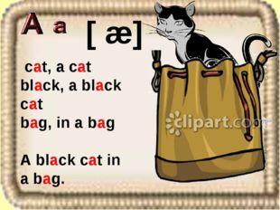 cat, a cat black, a black cat bag, in a bag A black cat in a bag. [ æ]