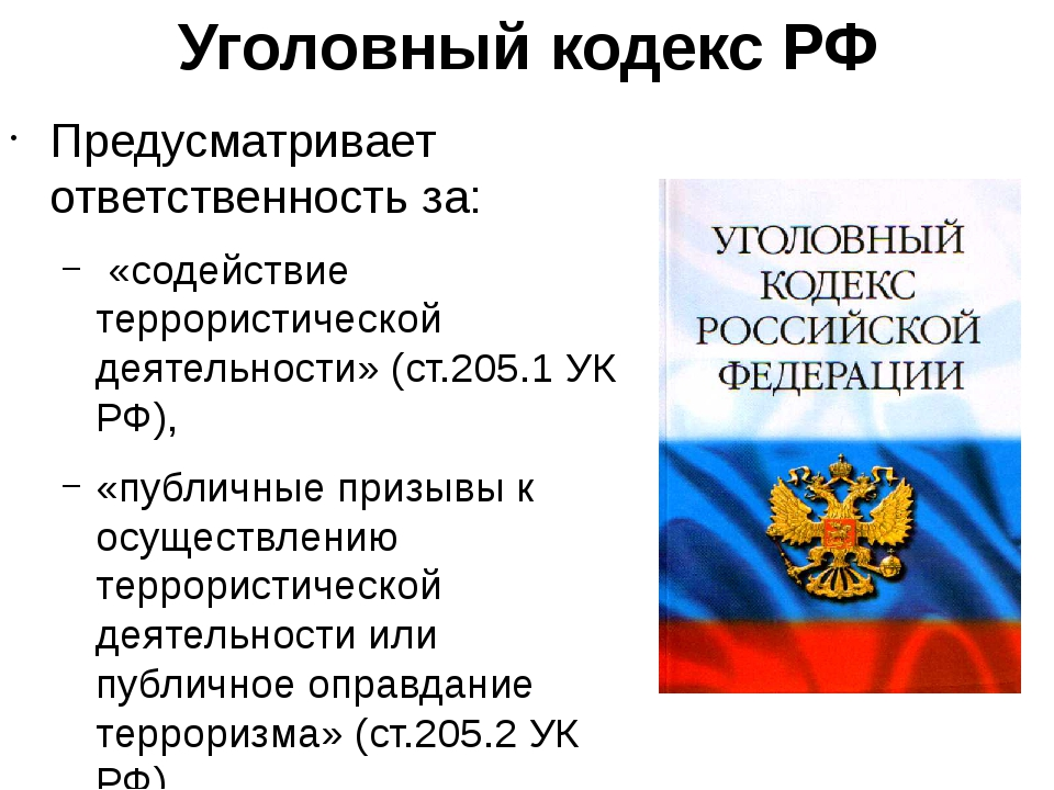 Уголовный кодекс РФ Предусматривает ответственность за: «содействие террорист...