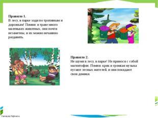 Правило 1. В лесу, в парке ходи по тропинкам и дорожкам! Помни: в траве мног