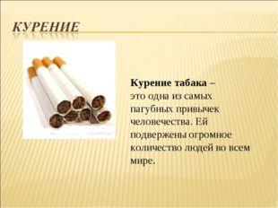Курение табака – это одна из самых пагубных привычек человечества. Ей подверж