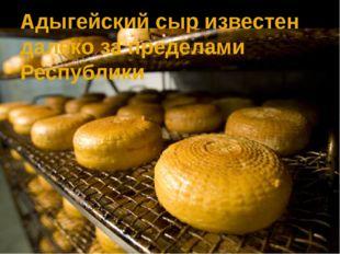 Адыгейский сыр известен далеко за пределами Республики