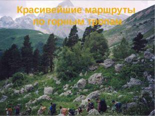 Красивейшие маршруты по горным тропам