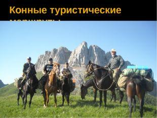 Конные туристические маршруты
