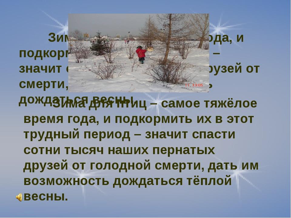 Зима для птиц – время года, и подкормить их в этот период – значит спасти со...