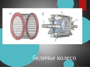 беличье колесо