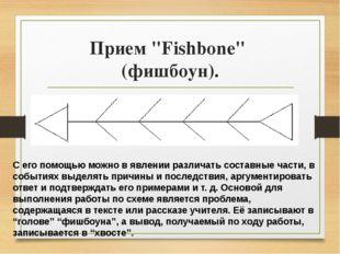 """Прием """"Fishbone"""" (фишбоун). С его помощью можно в явлении различать составные"""
