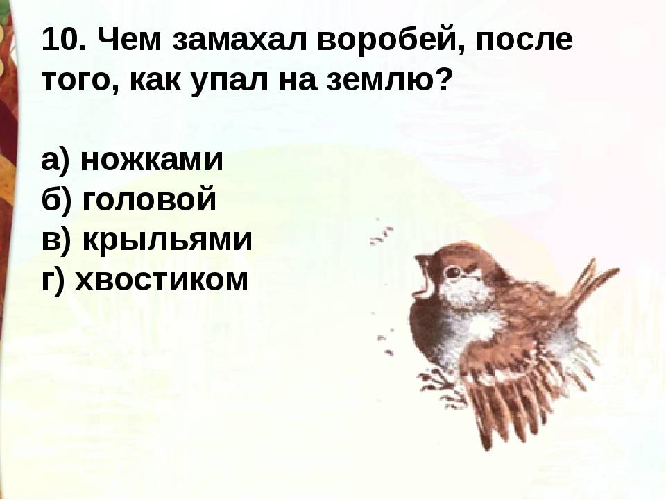 10. Чем замахал воробей, после того, как упал на землю? а) ножками б) голово...
