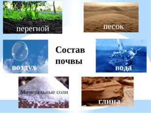 Состав почвы перегной песок воздух вода Минеральные соли глина