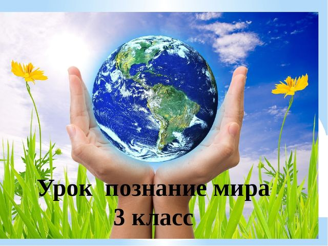 Урок познание мира 3 класс