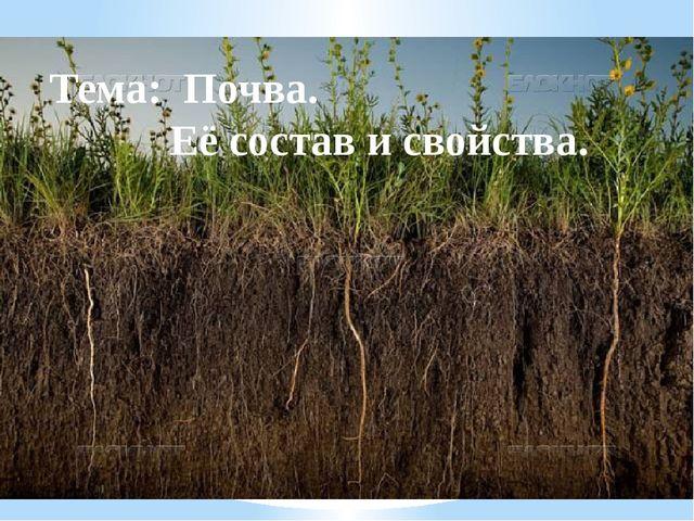Тема: Почва. Её состав и свойства.