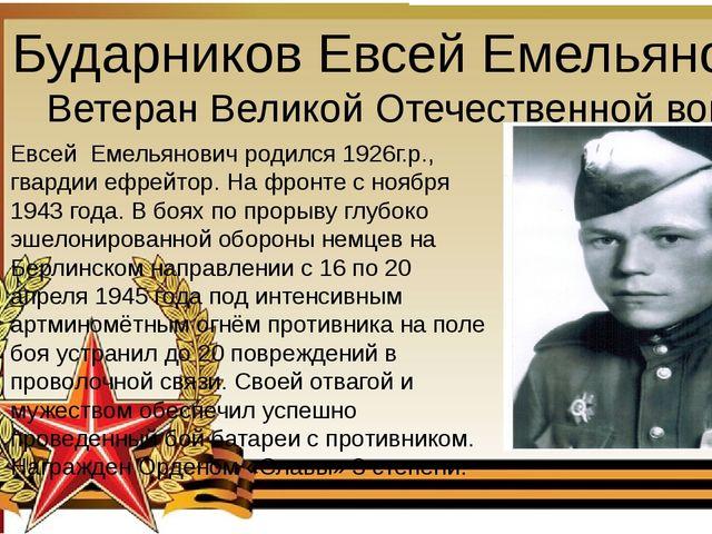 Бударников Евсей Емельянович Ветеран Великой Отечественной войны Евсей Емель...