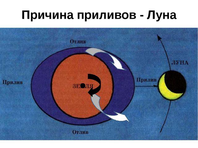 Причина приливов - Луна