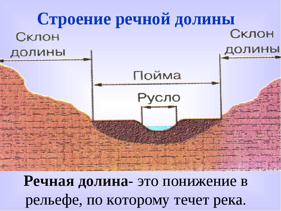 Строение речной долины Речная долина- это понижение в рельефе, по которому те...