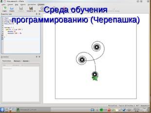 Среда обучения программированию (Черепашка)