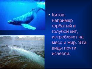 Китов, например горбатый и голубой кит, истребляют на мясо и жир. Эти виды по