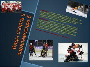 Виды спорта в паралимпеаде 6 Лыжный кросс. Лыжники состязаются в классической
