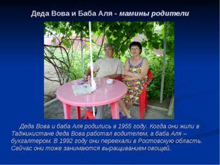 Деда Вова и Баба Аля - мамины родители Деда Вова и баба Аля родились в 1955 г
