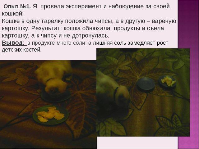 Опыт №1. Я провела эксперимент и наблюдение за своей кошкой: Кошке в одну та...