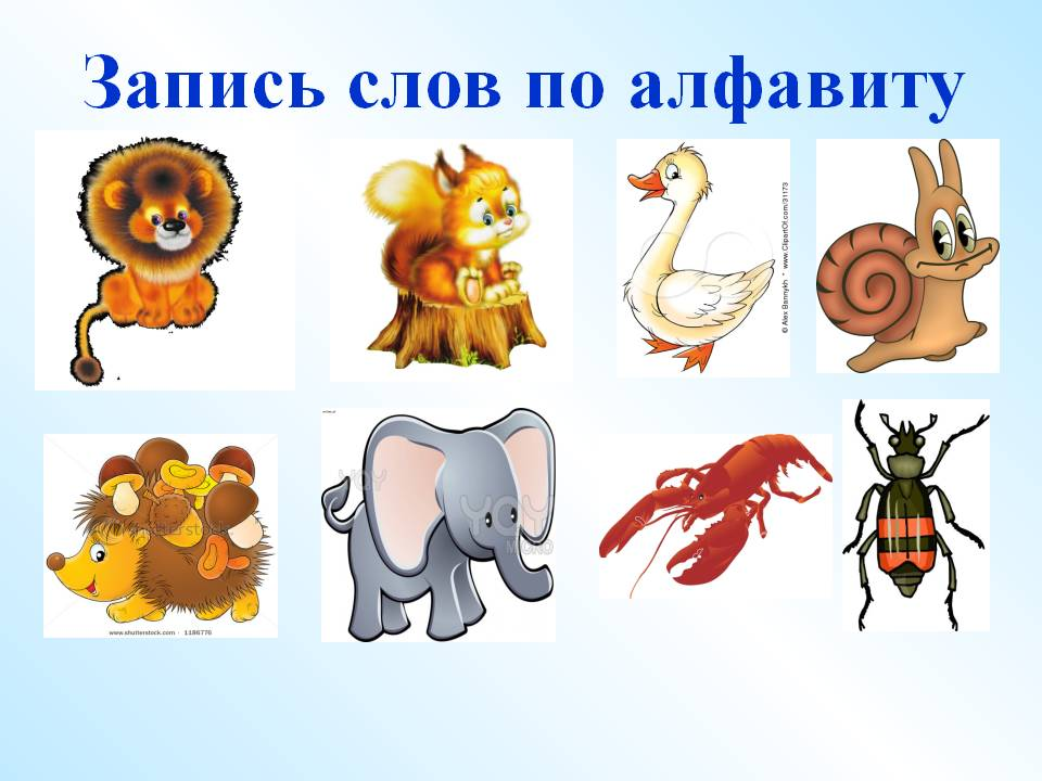 hello_html_29d804ab.jpg