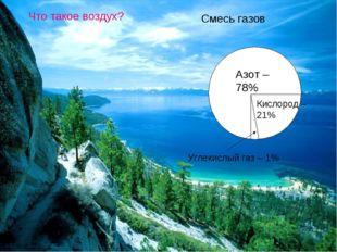 Что такое воздух? Смесь газов Азот – 78% Кислород – 21% Углекислый газ – 1%