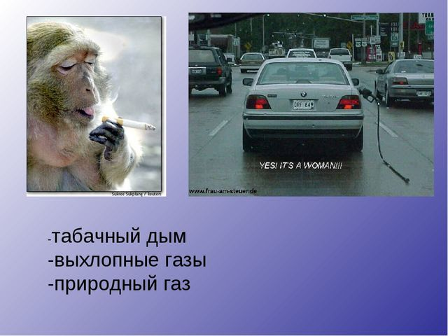 -табачный дым -выхлопные газы -природный газ