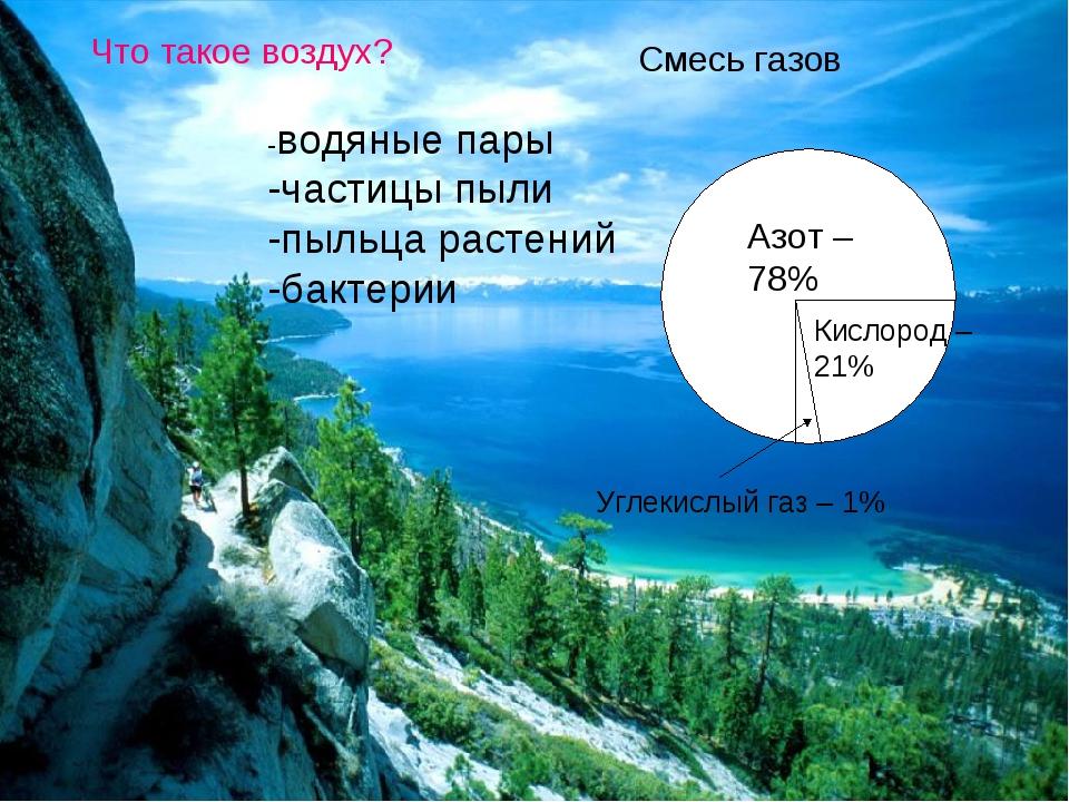 Что такое воздух? Смесь газов Азот – 78% Кислород – 21% Углекислый газ – 1% -...
