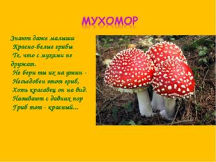 Знают даже малыши Красно-белые грибы Те, что с мухами не дружат. Не бе