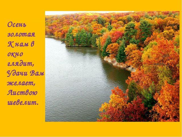 Осень золотая К нам в окно глядит, Удачи Вам желает, Листвою шевелит.