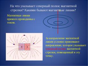 На что указывает северный полюс магнитной стрелки? Какими бывают магнитные ли