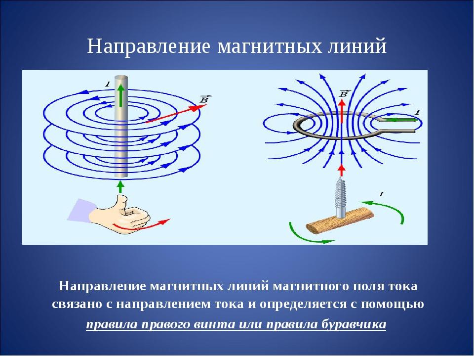 Направление магнитных линий Направление магнитных линий магнитного поля тока...