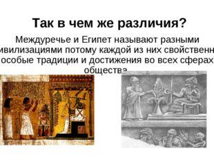 Так в чем же различия? Междуречье и Египет называют разными цивилизациями пот