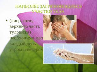 (лицо, шею, верхнюю часть туловища) необходимо мыть каждый день утром и вечер