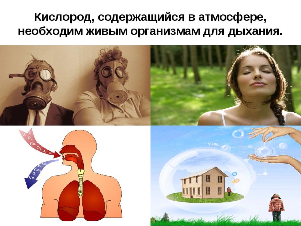 Кислород, содержащийся в атмосфере, необходим живым организмам для дыхания.