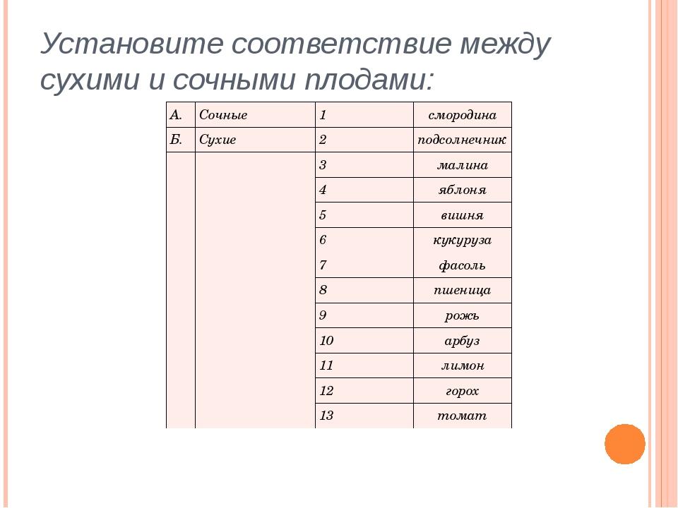 Установите соответствие между сухими и сочными плодами: А. Сочные 1 смородин...