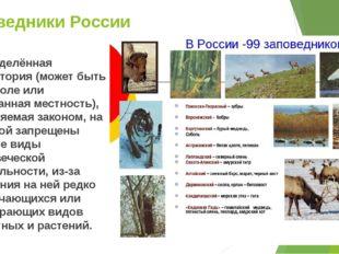 Заповедники России Определённая территория (может быть лес, поле или смешанна