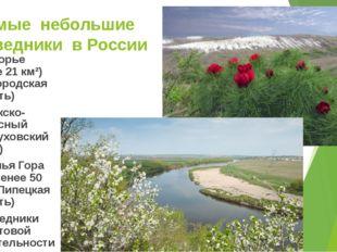 Самые небольшие заповедники в России Белогорье (более 21 км²) (Белгородская о