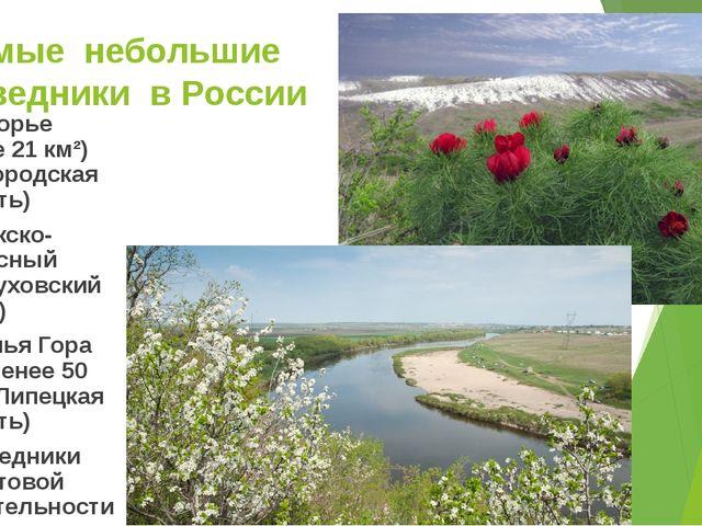 Самые небольшие заповедники в России Белогорье (более 21 км²) (Белгородская о...